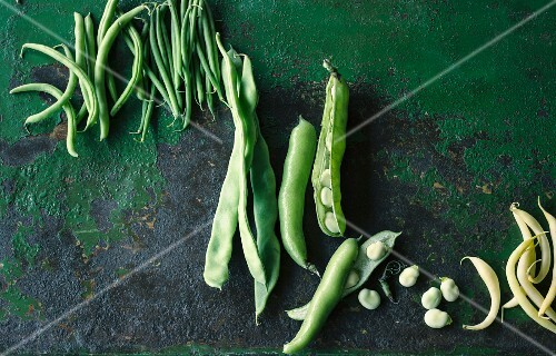 Various types of beans (seen from above)