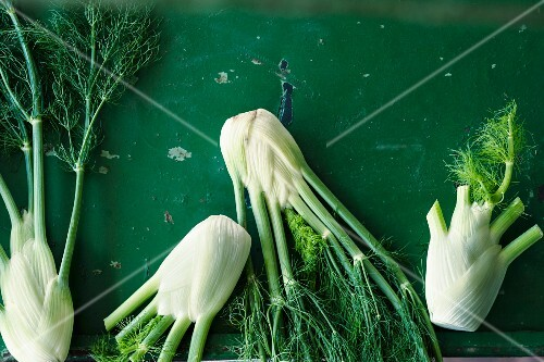 Fresh fennel bulbs on a green surface