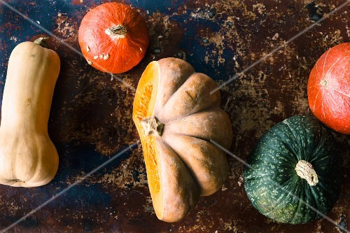 Assorted pumpkins, squashes and gourds