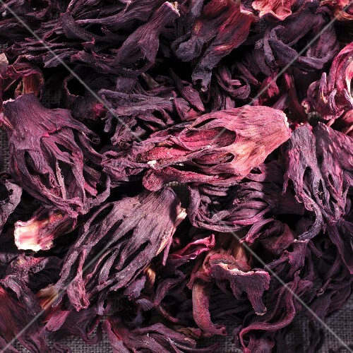 Dried hibiscus flowers, full frame