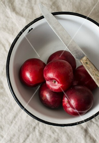 Fresh plums in an enamel bowl