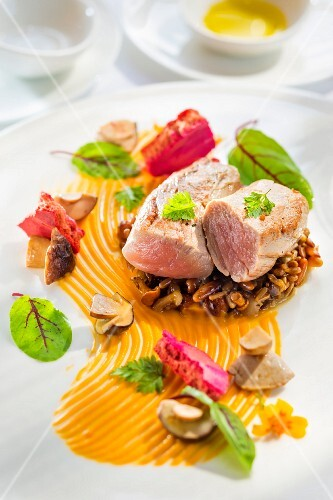 Veal fillet on a bed of risotto with sunflower seeds, pumpkin seeds and hazelnuts on a pumpkin purée