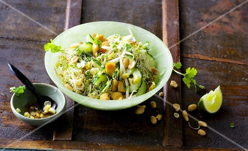 A Thai bean sprout with mungo beans, fried chicken breast and peanuts