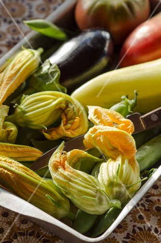 Fresh summer vegetables and courgette flowers