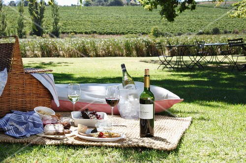 A picnic with wine