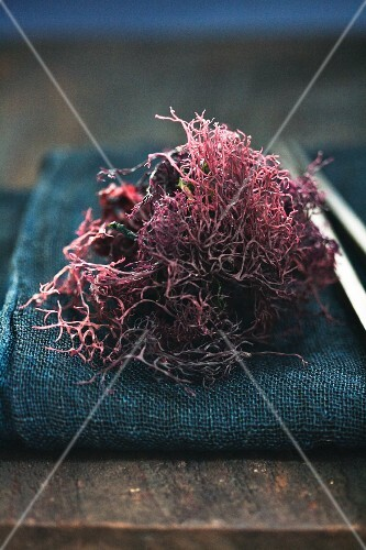 Dried, red seaweed for a salad