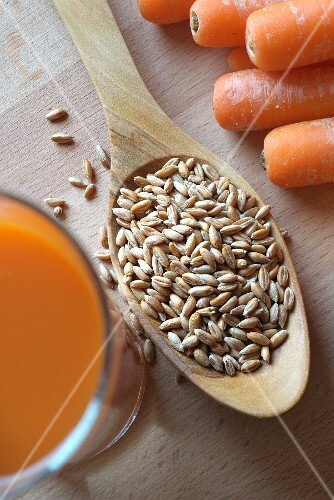 Spelt grains on a wooden spoon with carrots and carrot juice