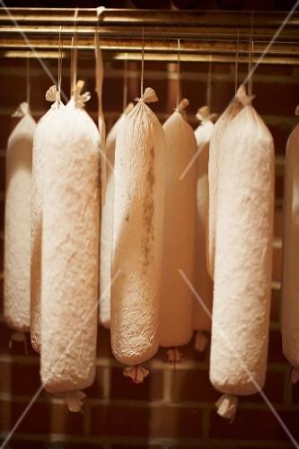 Sausages hanging in the ripening vault at Fleischerei Heyer in Werdau