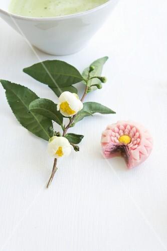 A wagashi chrysanthemum (kiku) next to a flowering sprig of tea leaves and a bowl of matcha tea