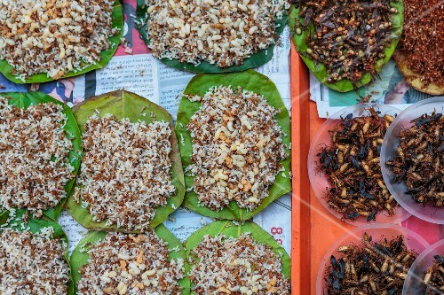 Edible ant eggs and insects at a market in Thailand