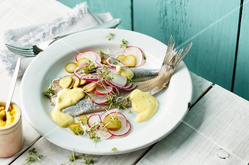 Soused herring fillets with fresh radishes, cornichons and a mustard sauce