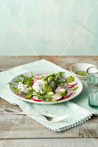 Herb radish carpaccio with coarse cream cheese