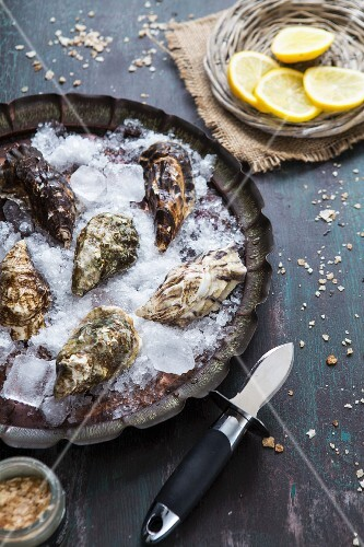Fresh oysters on ice with an oyster knife and lemon slices