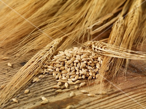 Barley seeds and ears of barley on a wooden surface