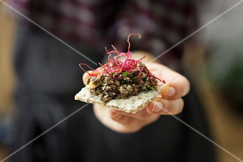 A person holding a cracker with a vegan mushroom spread