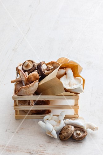 Various mushrooms in paper bags and in a wooden crate