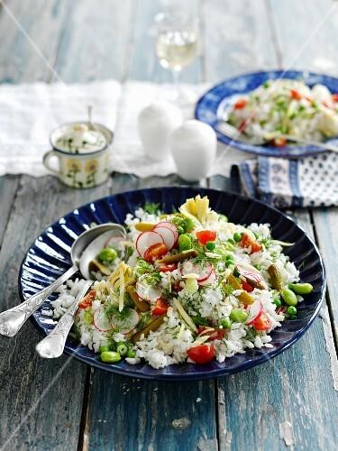 Reissalat mit Radieschen, Tomaten, Bohnen & Essiggurken