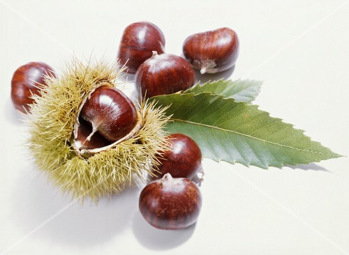 Sweet chestnuts, one in it shell, and two leaves