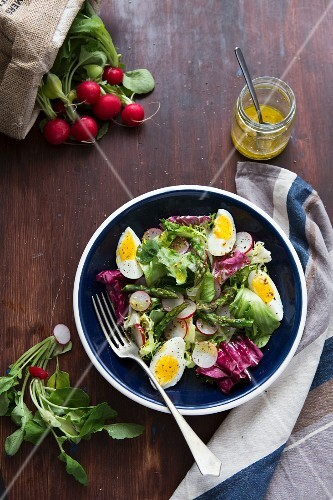 Radish salad with green asparagus and egg