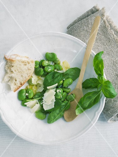 Broad bean and Parmesan salad with basil and white bread
