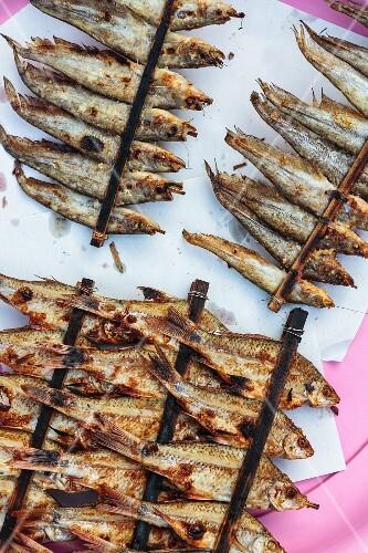Grilled fresh water fish at a market (Nong Khai, Thailand)