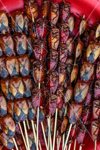 Edible insect skewers at a market (Vientiane, Laos)