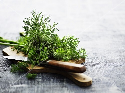 Dill on a wooden chopping board with a knife