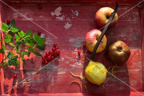 Frische Äpfel, Zitrone, Vanilleschote, rote Johannisbeeren und Minze