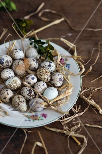 Quail's eggs on a plate with straw