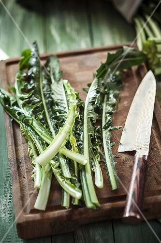 Dandelion leaves with a knife on a chopping board