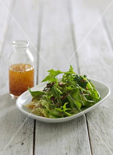 Green salad and vinaigrette