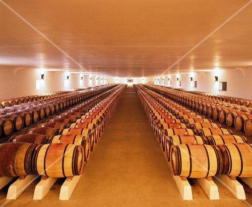 Barriques in the 1st-year chai of Château Mouton-Rothschild. Pauillac, Gironde, France. [Médoc / Bordeaux]