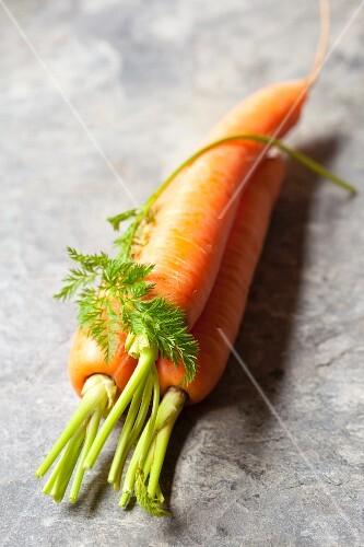 Three Whole Fresh Carrots
