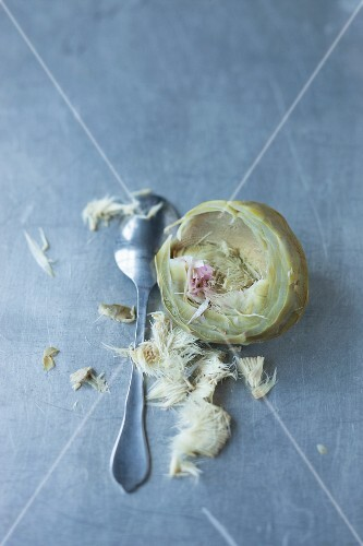 The choke being removed from a cooked artichoke