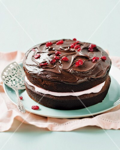 Chocolate and cranberry cake with a marshmallow filling