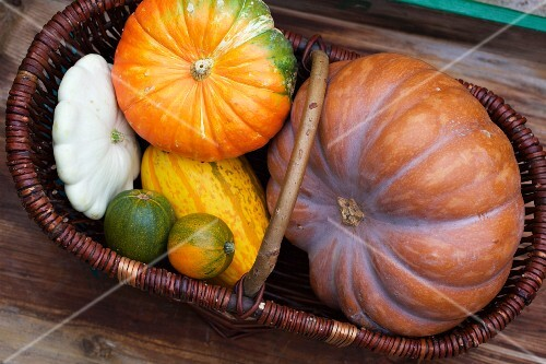Various pumpkins in a wicker basket