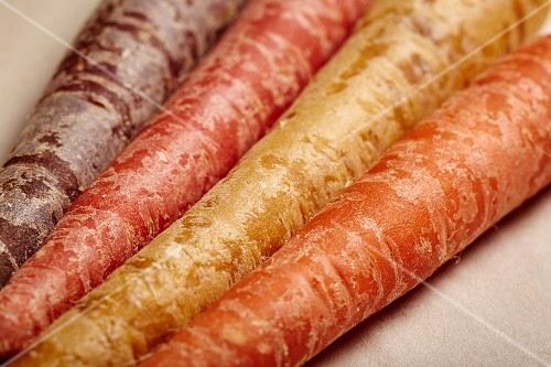 Various different coloured organic carrots (detailed)