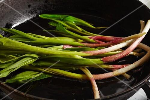 Fried wild leek in a pan