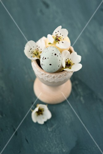 Sugar-coated chocolate eggs and pear blossom in wooden egg cup