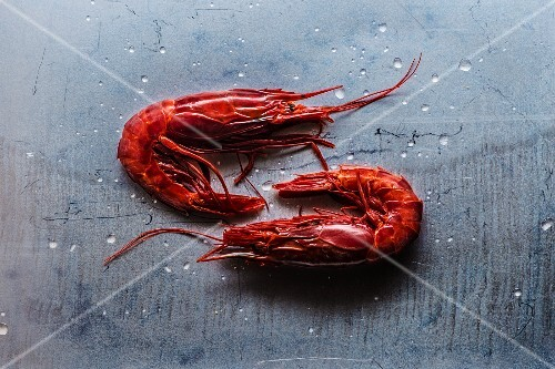 Two red prawns on a grey surface