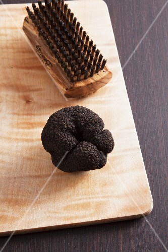 A summer truffle and a mushroom brush