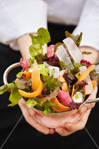 Mixed leaf salad with carrots and radishes