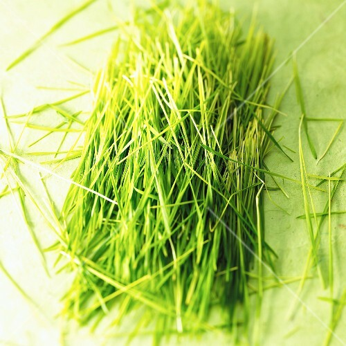 Sliced wheat grass on a green surface