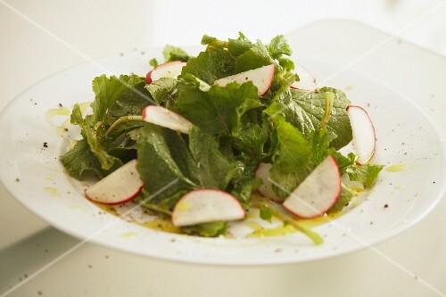 Radish leaf salad with radishes