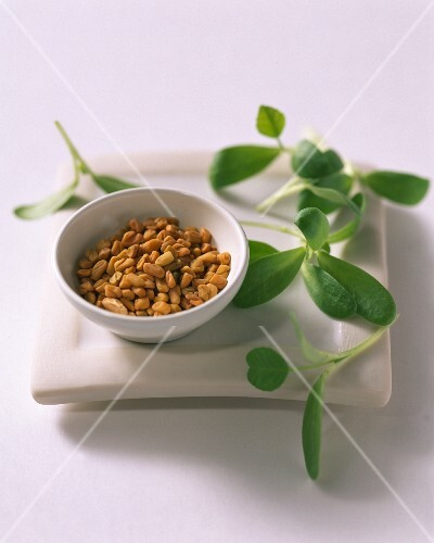 A bowl of fenugreek seeds