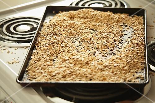 Roasted oats on a baking tray