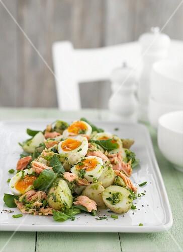 Potato salad with eggs and salmon