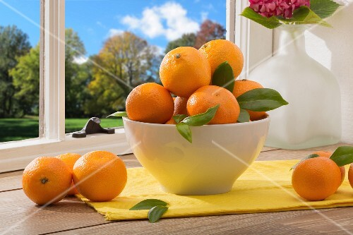 A bowl of mandarins on a table by a window