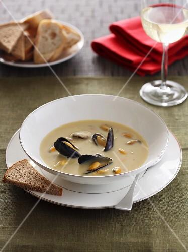 Cream of mussel soup Billy Bi