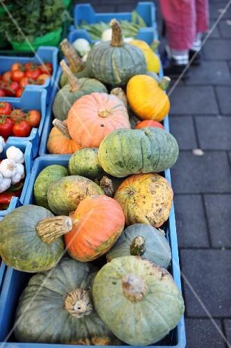 Various pumpkins in crates at a market